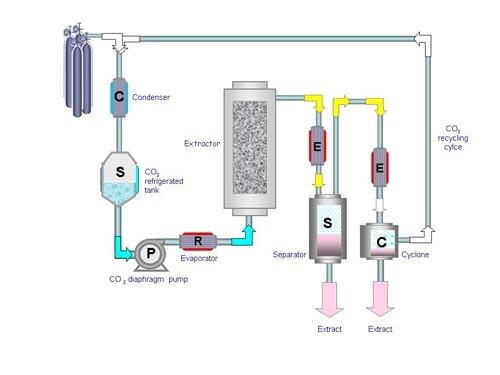 processo d'impianto